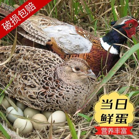 【10枚】破损包赔山鸡蛋野鸡蛋新鲜土鸡蛋山林散养农家七彩山鸡草鸡蛋10枚
