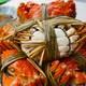 安東米富 大闸蟹公3.5公配2.5母 10只装鲜活螃蟹券团购