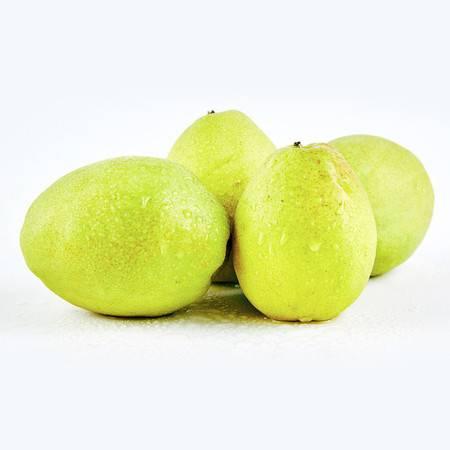 笑农 香酥梨5斤