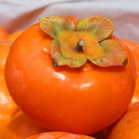 笑农 火晶柿子5斤