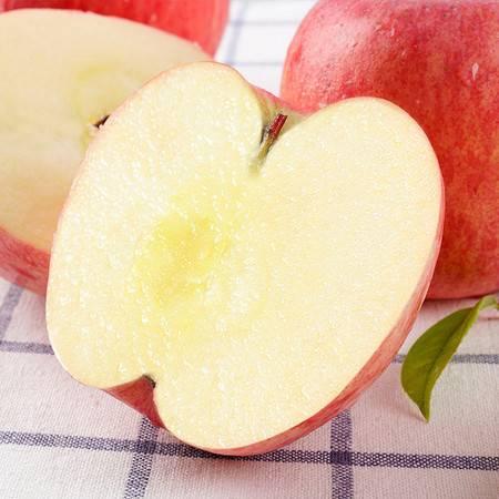 笑农 陕西红富士5斤(果径70-75)