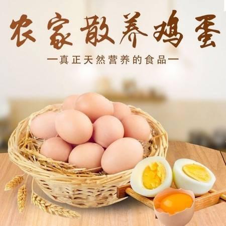 新鲜土鸡蛋一箱批发正宗果林间散养农家放养柴鸡蛋草鸡蛋20枚装(45g/枚)