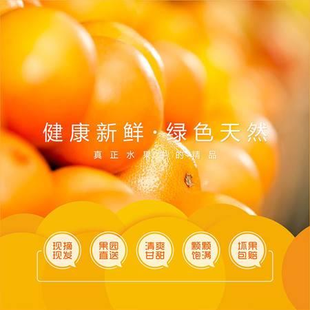 11月19日发货 荆门漳河橘岛庄园李集岛精品岛橙1*8礼盒装约4斤装果园直送