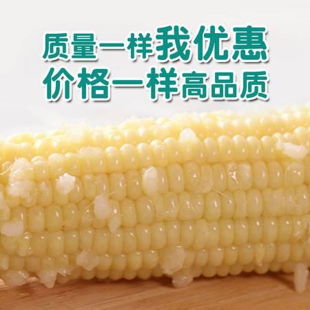 新东北糯玉米真空包装新鲜甜糯玉米即食黄白糯玉米棒4根-12根