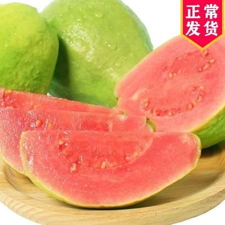 【现摘现发】正宗广西番石榴红心芭乐8斤5斤3斤2个当季新鲜水果批发