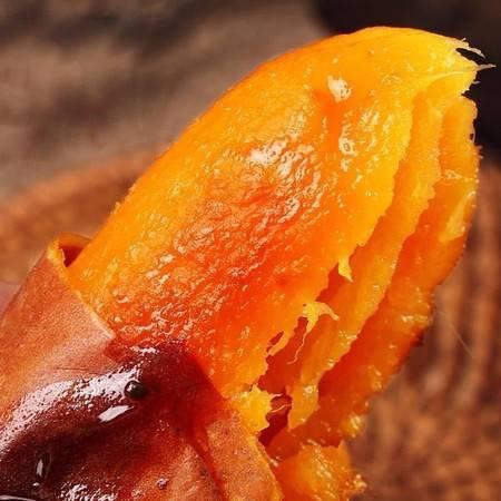 【现挖现发,大降价5斤14.8元】红薯新鲜沙地红薯黄心地瓜软糯香甜蜜薯5/9斤包邮