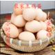 【土鸡蛋,绿壳乌鸡蛋】散养营养笨鸡蛋/乌鸡蛋  破损包赔当天现捡整箱包邮