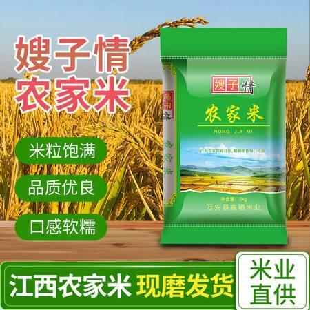 【邮政快递】江西农家米10斤长粒香大米【24小时内发货】农家籼米支持批发