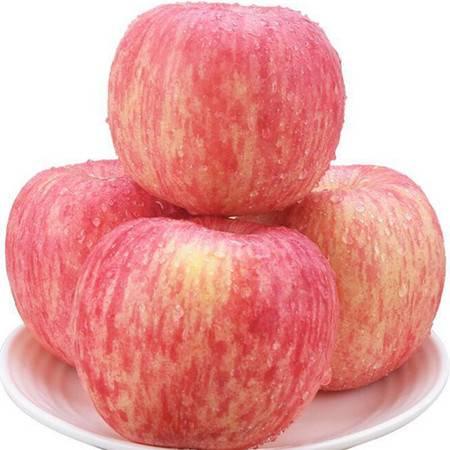 山东烟台红富士苹果应季水果新鲜5斤一整箱【属之味】