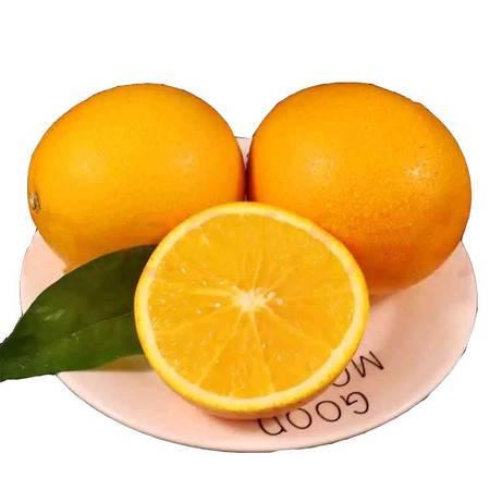 神龙栖 巴东县新鲜现摘水果多汁脐橙酸甜可口孕妇橙连箱5斤/件
