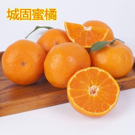 农家自产 城固特产秦岭新鲜蜜桔