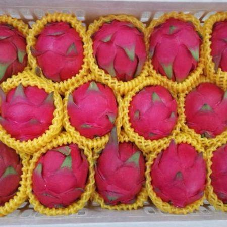 正宗金都一号红心火龙果蜜宝红肉火龙果新鲜水果当季批发5斤/2斤