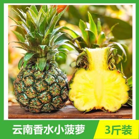 【3斤装】云南河口香水小菠萝新鲜当季水果手撕波萝现摘现发【神农良品】