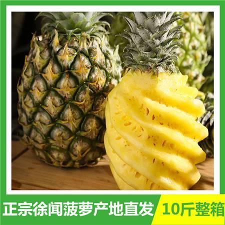 【徐闻菠萝】正宗徐闻菠萝新鲜当季水果包邮大果甜凤梨特产地直发整箱10斤【神农良品】