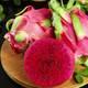 【红心火龙果】当季金都蜜宝红心火龙果红肉新鲜应季热带水果【神农良品】