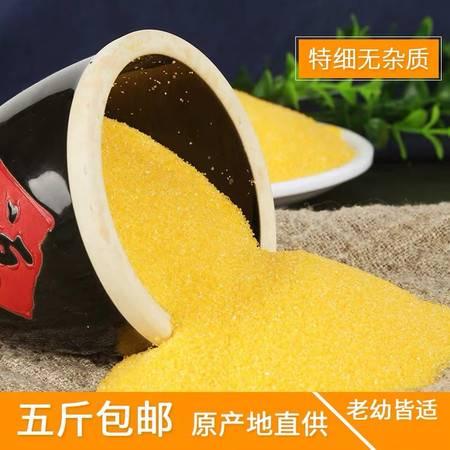 河北沧州海兴  农家自产   玉米糁